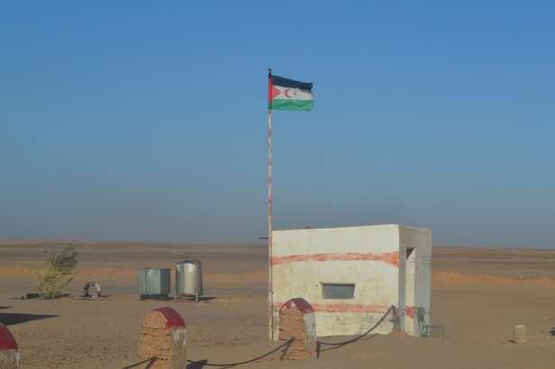 Sahara Occidental (25)