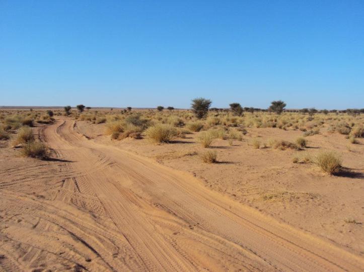 Ríos en medio del Sahara Occidental