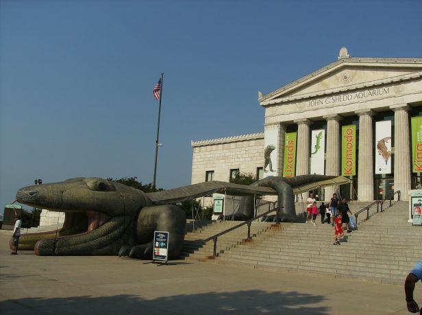 USA 2007 086
