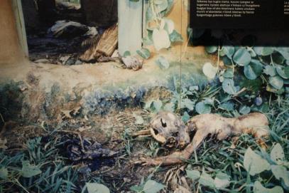 Museo Genocidio Kigali (132)