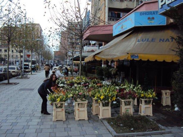 Venta callejera de flores en el centro de Tirana