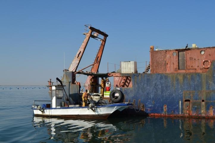 Barco que sirve como granja de ostras