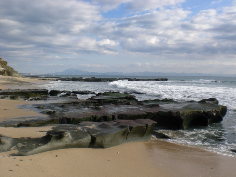 021 - Punta Paloma (Cádiz) 9-1-2009
