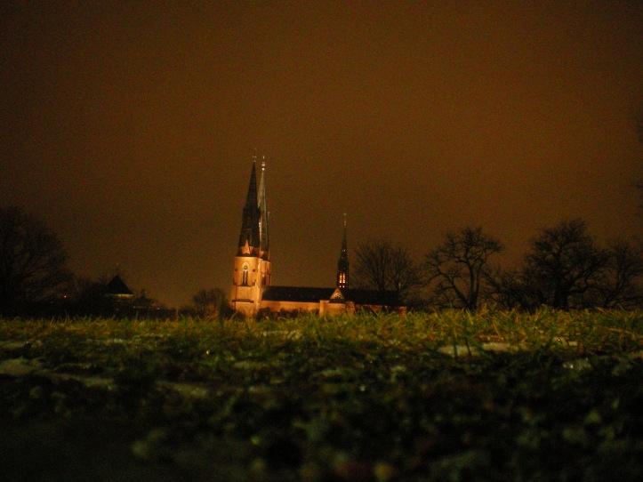Uppsala 2008.12.05 (77)