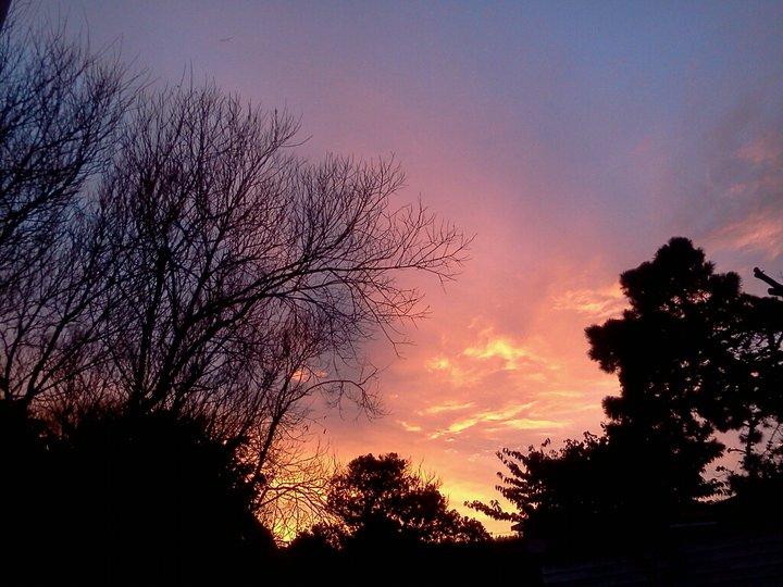 Wellington, NZ 5
