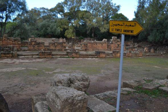 Tipaza (11)