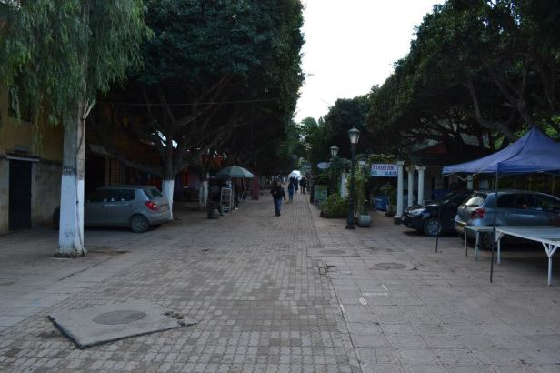 Tipaza (4)