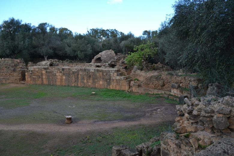 Tipaza (8)