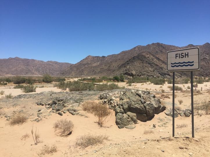 2015.12.21 Lüderitz, NA (52)