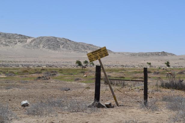Springboks y óryxes cerca de la Playa Agate con el letrero del Sperrgebiet que prohíbe la entrada