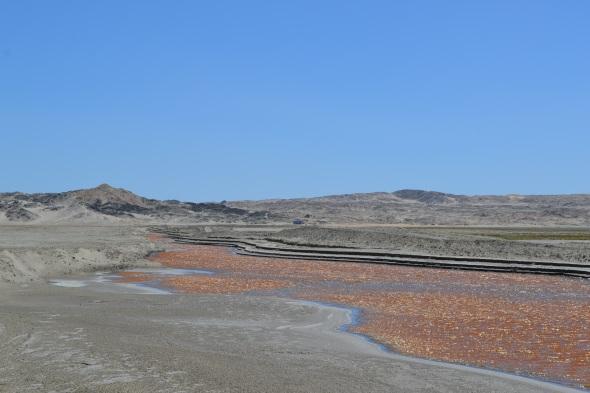De camino al Punto de Díaz desde Lüderitz