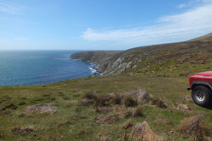 A sunny day on the cliffs at Falkland Sound looking across to the West Island