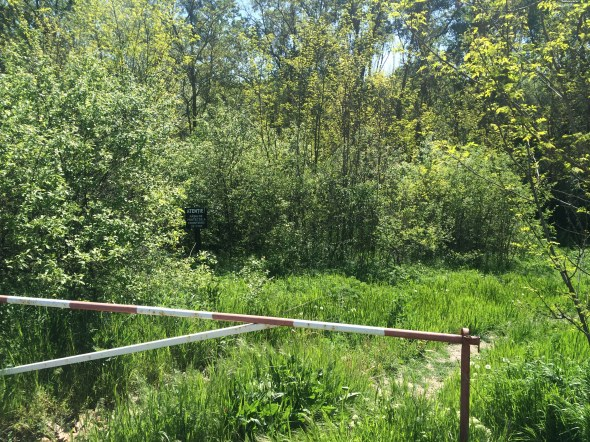 Orilla derecha del Río Prut en la frontera entre Rumania y Moldavia
