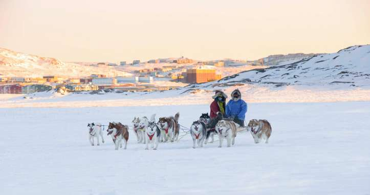 Dogsledding team in Nunavut (Courtesy of: Fred Lemire)