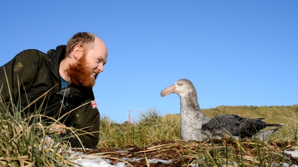 me with a giant petrel
