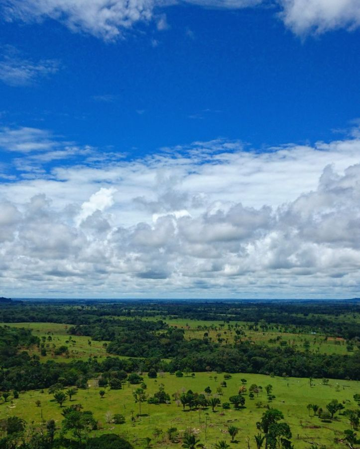 La amazonia desde la serranía de La Lindosa Pelos