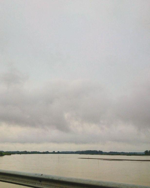 Río Ariari Pelos