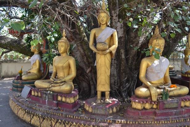 2017.01.06 Vientiane, LA (C) (44)