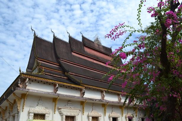 2017.01.07 Vientiane, LA (C) (32)