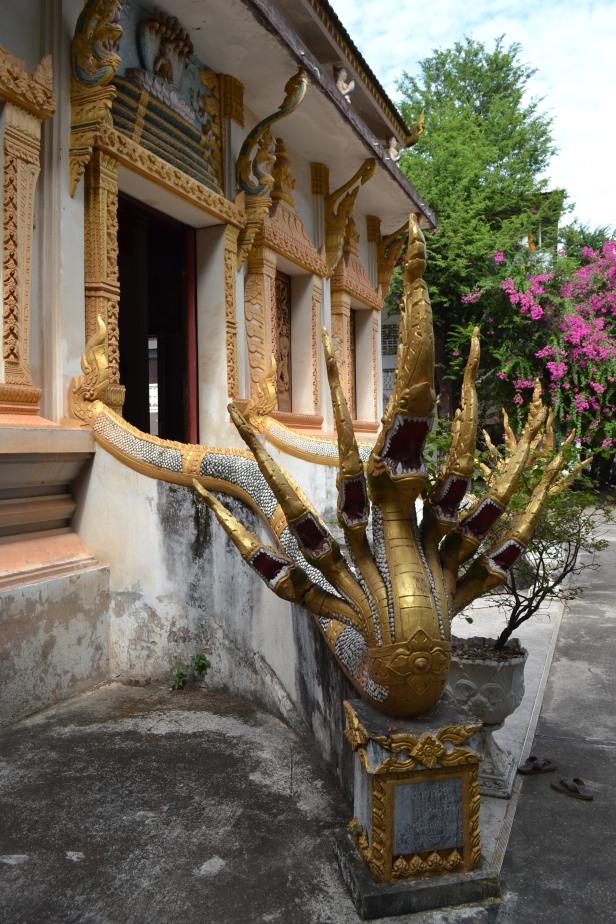 2017.01.07 Vientiane, LA (C) (36)