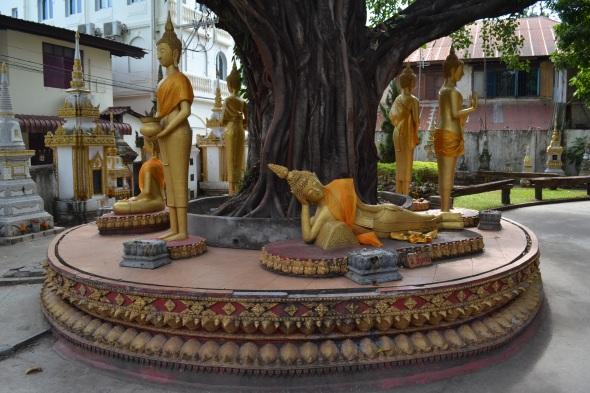 2017.01.07 Vientiane, LA (C) (41)