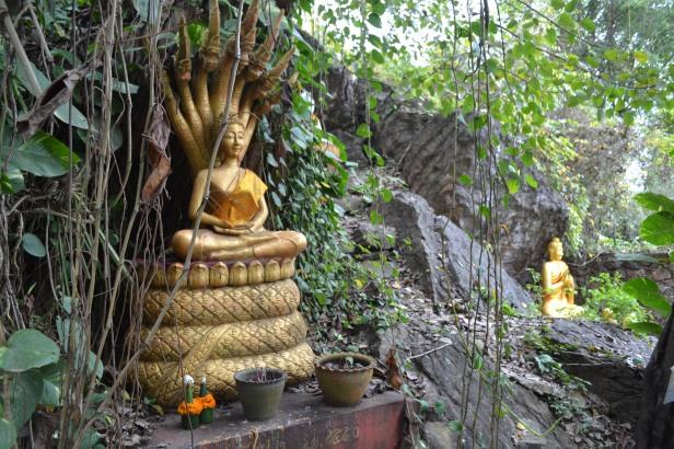 2017.01.08 Luang Prabang, LA (Cám) (22)