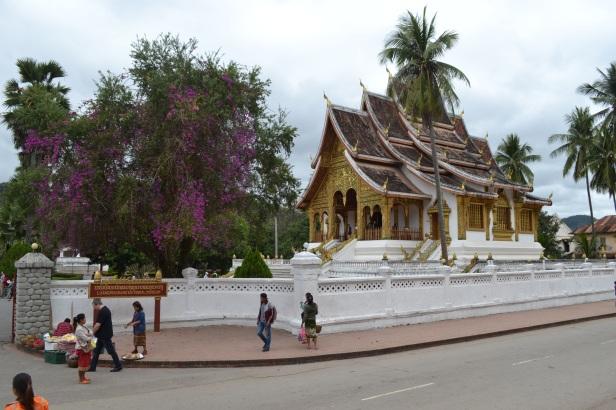 2017.01.08 Luang Prabang, LA (Cám) (59)