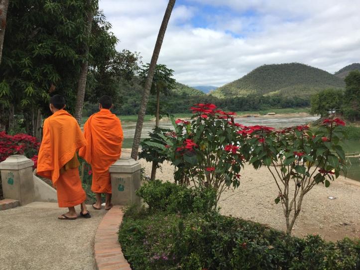 2017.01.08 Luang Prabang, LA (Cel) (119)