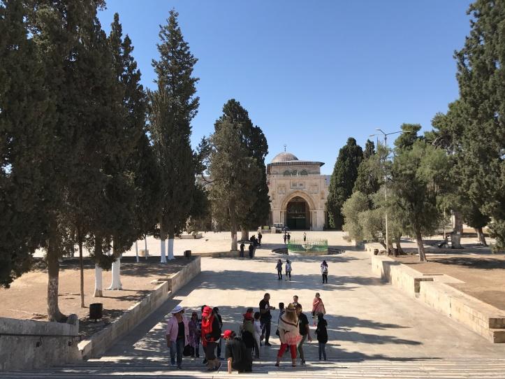 Explanada de las mezquitas (3)