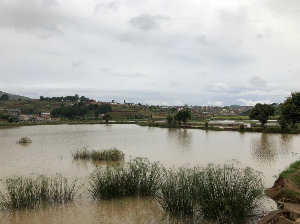 2017.12.26 Antananarivo, MG (311)
