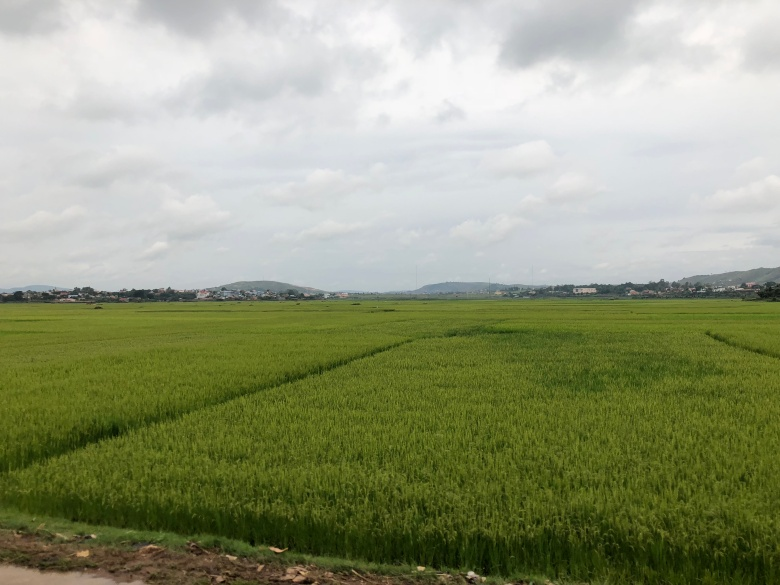 2017.12.26 Antananarivo, MG (315)